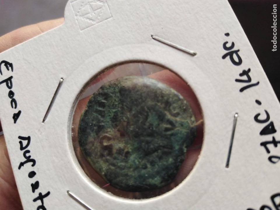 MUY BONITO AUGUSTO COLONIA PATRICIA CORDOBA (Numismática - Hispania Antigua - Moneda Ibérica no Romanas)
