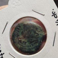 Monedas ibéricas: MUY BONITO AUGUSTO COLONIA PATRICIA CORDOBA. Lote 211567995