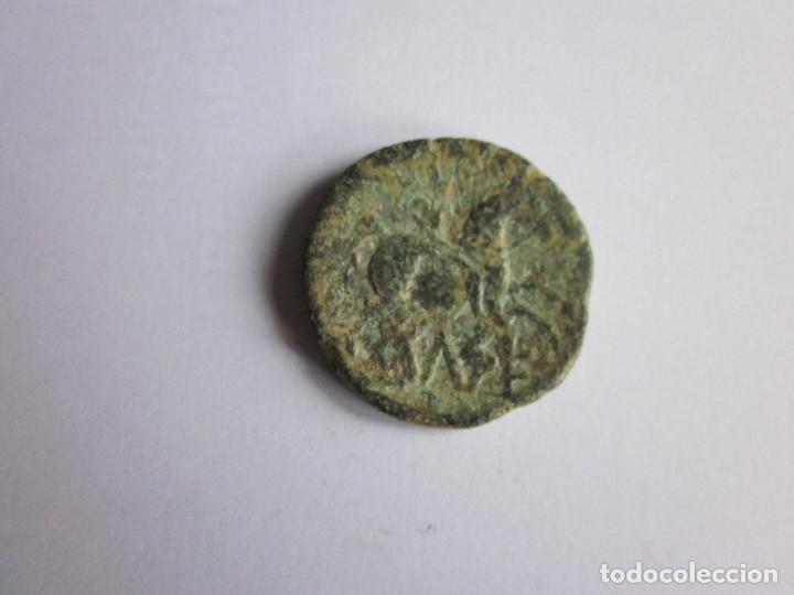 Monedas ibéricas: As de Celse. Pátina. - Foto 2 - 216882695