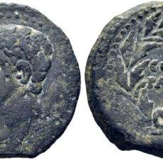 Monedas ibéricas: HISPANIA. COLONIA PATRICIA. AS. CABEZA DE AUGUSTO. COLONIA PATRICIA EN LAUREA. MBC. Lote 221232191