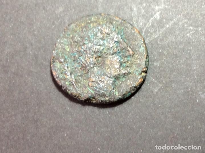 AS SAITI (Numismática - Hispania Antigua - Moneda Ibérica no Romanas)