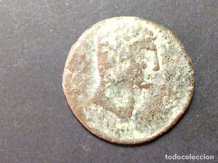 AS IKALKUNSKEN (Numismática - Hispania Antigua - Moneda Ibérica no Romanas)