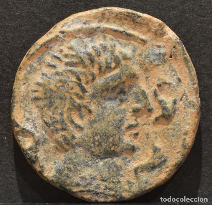AS CELSE ZARAGOZA ZONA VELILLA DE EBRO (Numismática - Hispania Antigua - Moneda Ibérica no Romanas)