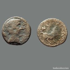 Monedas ibéricas: CASTULO. SEMIS. 180 A.C. CAZLONA (JAÉN). 166-L. Lote 278551643