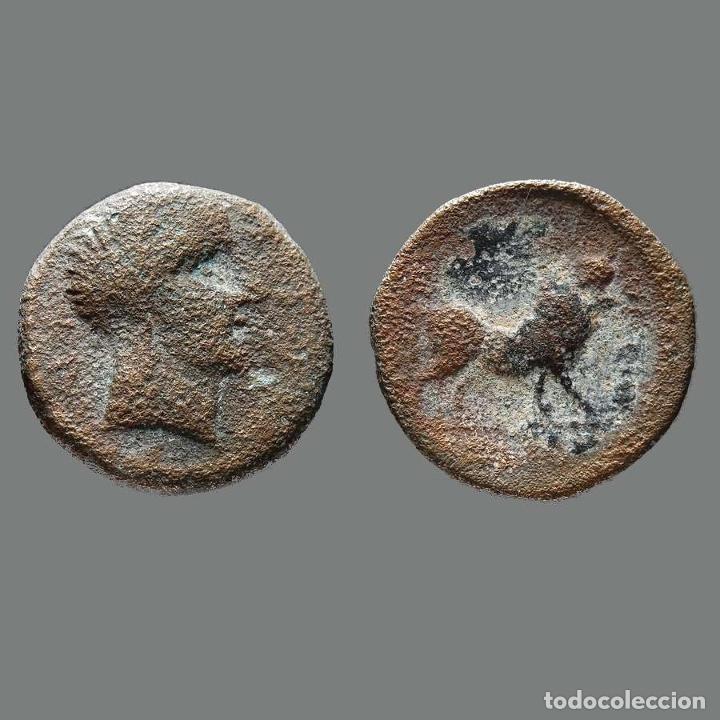 CASTULO. SEMIS. 180 A.C. CAZLONA (JAÉN). 165-L (Numismática - Hispania Antigua - Moneda Ibérica no Romanas)