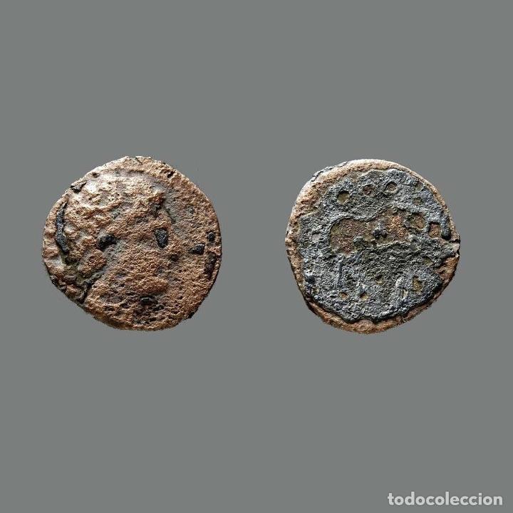 CESE. SEMIS. 220-200 A.C. TARRAGONA (CATALUÑA). 158-L (Numismática - Hispania Antigua - Moneda Ibérica no Romanas)