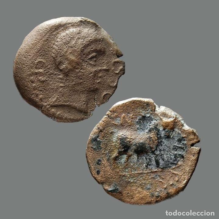CASTULO. SEMIS. 180 A.C. CAZLONA (JAÉN). 154-L (Numismática - Hispania Antigua - Moneda Ibérica no Romanas)