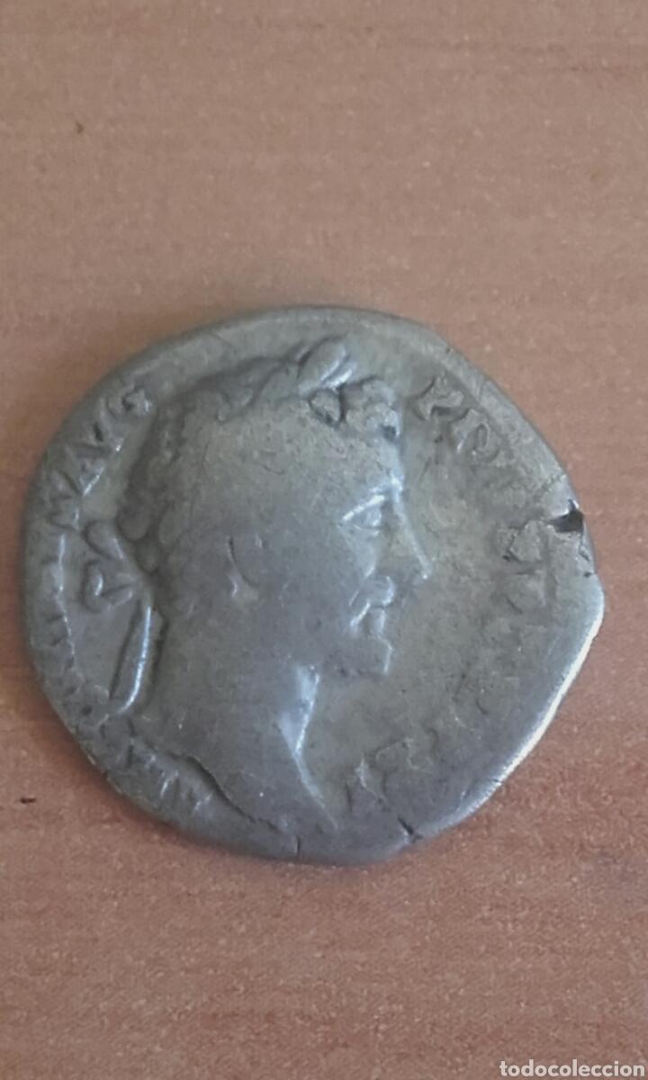 Monedas Imperio Romano: VER 81 - DENARIO ROMANO ANTONINO PIO DENARIO ANTONINO PIO MEDIDAS SOBRE 17 MILIMETROS PESO SOBRE - Foto 2 - 97708103