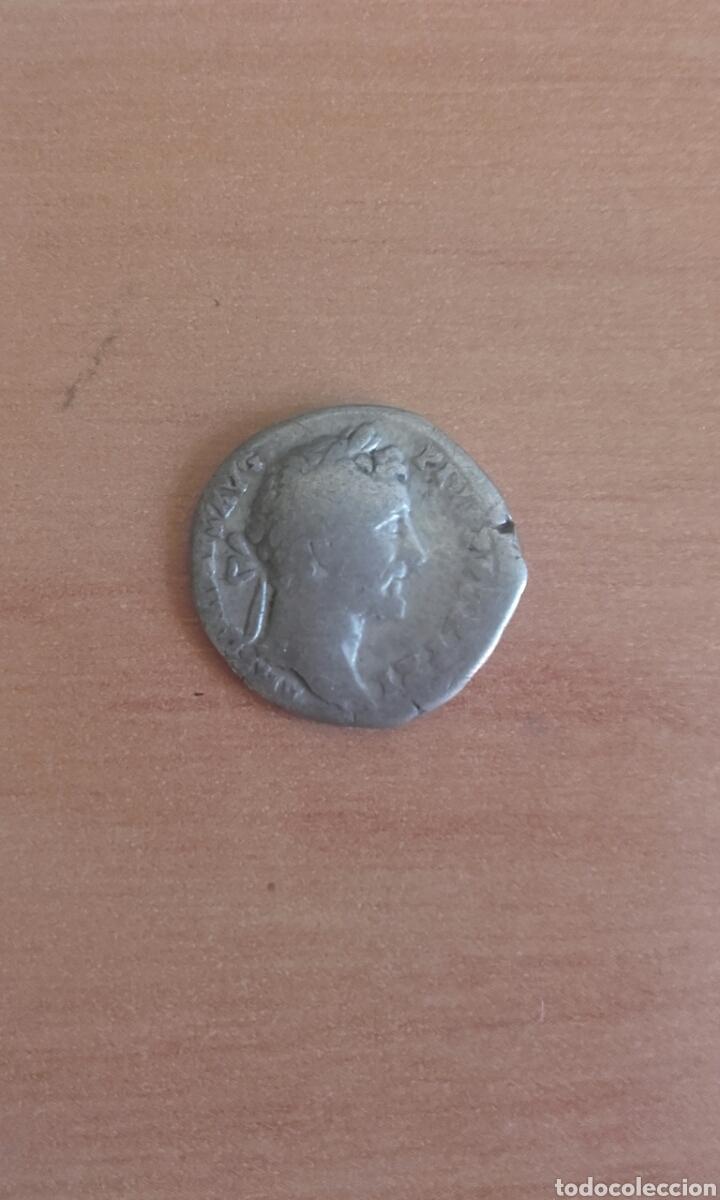 Monedas Imperio Romano: VER 81 - DENARIO ROMANO ANTONINO PIO DENARIO ANTONINO PIO MEDIDAS SOBRE 17 MILIMETROS PESO SOBRE - Foto 4 - 97708103