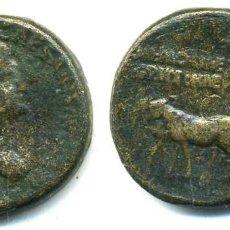 Monedas Imperio Romano: AGRIPINA, SESTERCIO33,8 G. FALSA DE EPOCA ( ESCASA). Lote 101153119