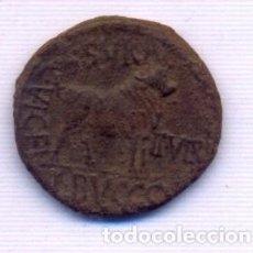 Monedas Imperio Romano: INTERESANTE AS DE LA VACA SIN CATALOGAR. Lote 151469810
