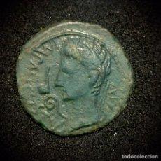 Monedas Imperio Romano: AS-AUGUSTO-CAESARAUGUSTA. Lote 194253586