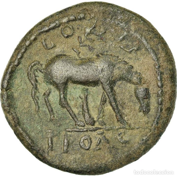 Monedas Imperio Romano: Moneda, Troas, Severus Alexander, Bronze Æ, 222-235, Alexandria, MBC, Bronce - Foto 2 - 205341541