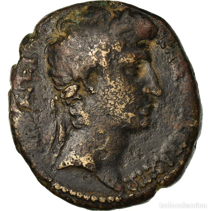 MONEDA, SELEUCIS AND PIERIA, AUGUSTUS, BRONZE Æ, 3/2 BC, ANTIOCH, BC+, BRONCE (Numismática - Periodo Antiguo - Roma Imperio)