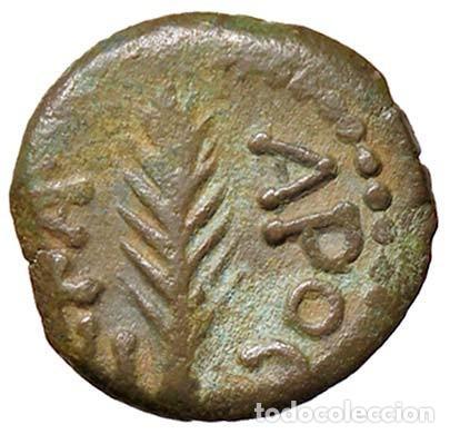 NERO (54-68) - PRUTAH (JUDEA) - PALMA / R LAUREL QUE CONTIENE LA INSCRIPCIÓN S. COP. 96 (AE G. 1,89 (Numismática - Periodo Antiguo - Roma Imperio)