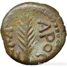 Monedas Imperio Romano: NERO (54-68) - PRUTAH (JUDEA) - PALMA / R LAUREL QUE CONTIENE LA INSCRIPCIÓN S. COP. 96 (AE G. 1,89. Lote 210323666