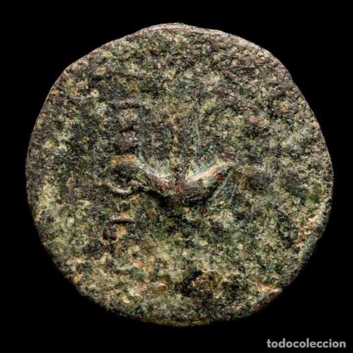 Monedas Imperio Romano: ESPAÑA, Carthago Nova. Æ Semis. L. Appuleius Rufus y C. Maecius - Foto 2 - 236534635