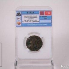 Monedas Imperio Romano: MONEDA BRONCE SIRIA PROVINCIA ROMANA SIRIA SELECIUS Y PIERIA AUGUSTO - CERTIFICACION WAC - EN SLAB. Lote 241716340