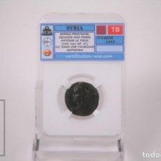 Monedas Imperio Romano: MONEDA SIRIA PROVINCIA ROMANA SIRIA SELECIUS Y ANTIOCO - CERTIFICACION WAC - EN SLAB. Lote 241717335