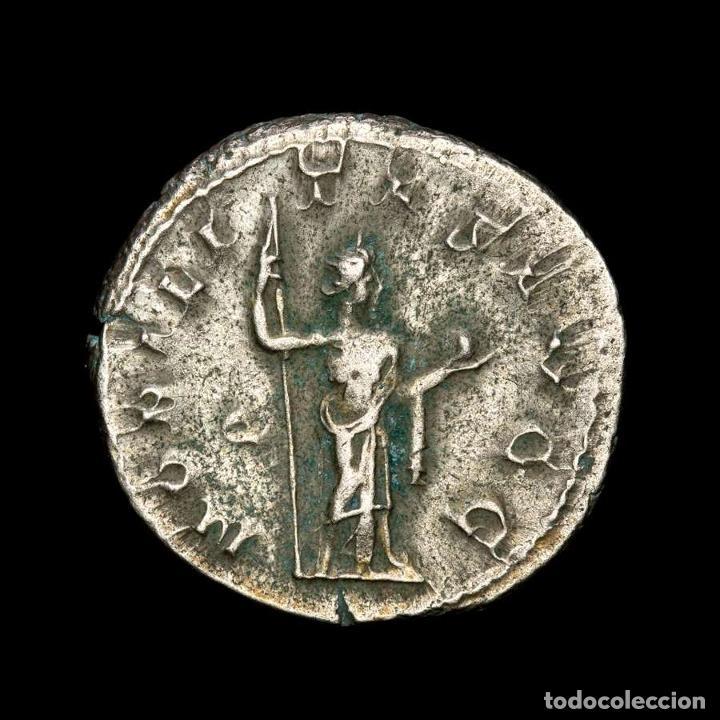 Monedas Imperio Romano: Filipo I - Antoniniano de plata, limpiado. NOBILITAS AVGG. Roma. - Foto 4 - 278188053
