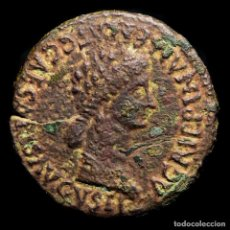 Monedas Imperio Romano: CALÍGULA (37-41 D.C.) AGRIPPINA, CAESARAUGUSTA. AS DE BRONCE.. Lote 278196048