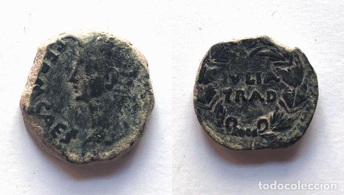 AS HISPANO ROMANO / IULIA TRADUCTA / AUGUSTO / ALGECIRAS ( CÁDIZ ) 12,5 GRS. (Numismática - Periodo Antiguo - Roma Imperio)