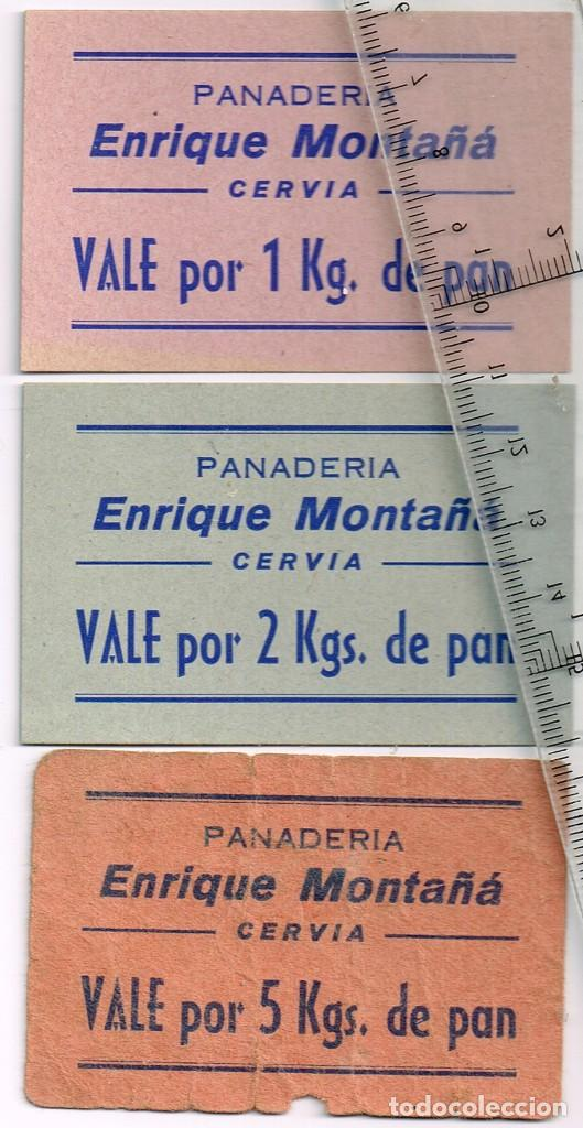 CERVIA PANADERÍA ENRIQUE MONTAÑÁ LOTE 3 VALES DE PAN 1 DE 1 KG., 1 DE 2 KGS. Y 1 DE 5 KGS. (Numismática - España Modernas y Contemporáneas - Locales y Fichas Dinerarias y Comerciales)