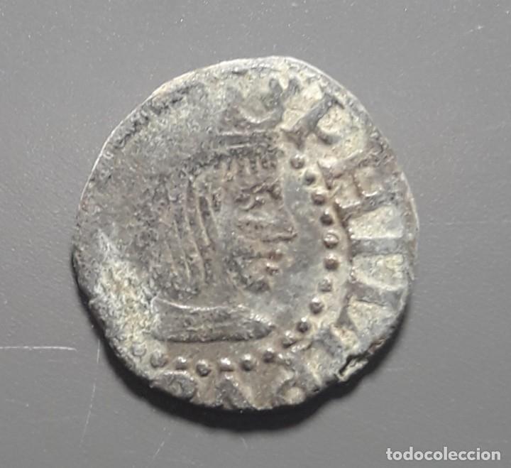 EXCELENTE DINERO DE GIRONA (ÉPOCA FELIPE II 1556-1598) (Numismática - Medievales - Cataluña y Aragón)