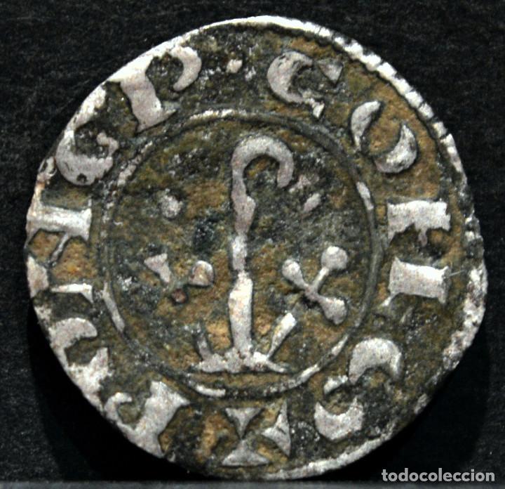 DINERO PONCE DE CABRERA VARIANTE CONDADO D`URGELL LLEIDA PONÇ DE CABRERA (1236-1243) (Numismática - Medievales - Cataluña y Aragón)