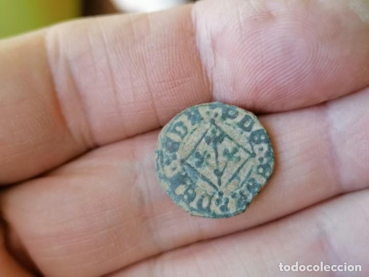 PUYESA DE LÉRIDA FERNANDO V. MONEDA LOCAL (Numismática - Medievales - Cataluña y Aragón)