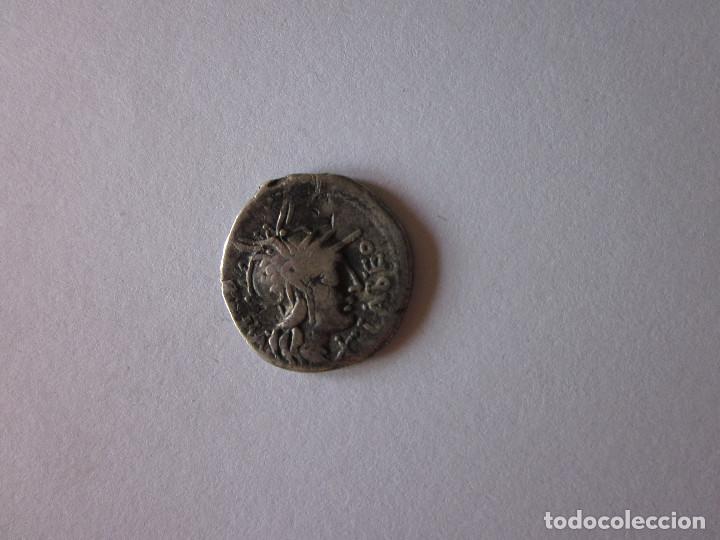 DENARIO. GENS FABIA. PLATA. (Numismática - Periodo Antiguo - Roma República)