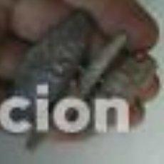 Monedas Roma República: LOTE DE BALAS DE HONDA ROMANA UNA TALLADA. Lote 117137115