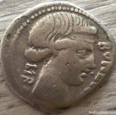 Monedas Roma República: DENARIO ROMANO REPUBLICANO SCRIBONIA - LUCIUS LIBO - SCRIBON - 3,31 G - MUY RARO!. Lote 130471950