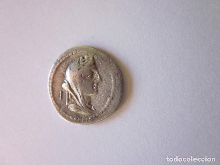 DENARIO REPUBLICANO. GENS FABIA. PLATA. (Numismática - Periodo Antiguo - Roma República)