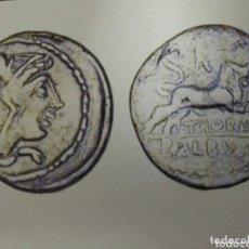 Monedas Roma República: BELLO DENARIO ROMANO REPÚBLICA FAMILIA THORIA 105 AC TORO JUNO 3,72 GR. Lote 172230370