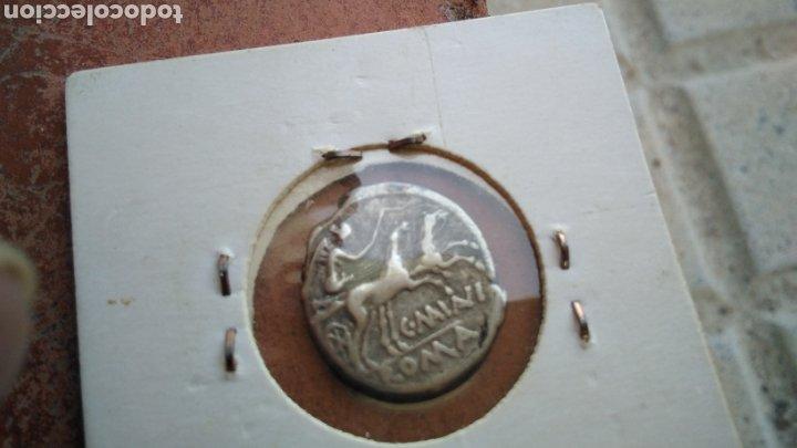 Monedas Roma República: bonito Denario Republicano,de plata , Familia Minucia 133- 126 A.C., - Foto 4 - 188459931