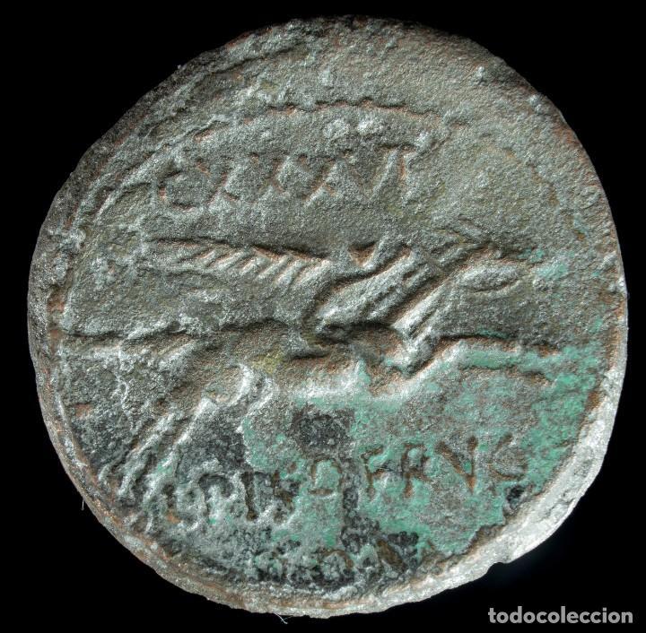 Monedas Roma República: Denario Republicano (Forrado), Familia Calpurnia (90 AC) 19 mm / 3.06 gr. - Foto 2 - 222377173