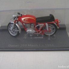 Motos a escala: MAQUETA MOTO CLASICA MARCA: DUCATI MODELO 250 MACH 1 (AÑO 1964) ESCALA 1/24 - CON SU URNA NUEVA. Lote 241155180
