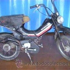 Motos: HONDA 49 CC PX COMPLETA. Lote 26036946