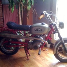 Motos - Mini moto Ducati - 56746613