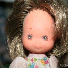Muñecas Lesly y Barriguitas: MUÑECA LAURA DE LAS MONTAÑAS . Lote 195403087
