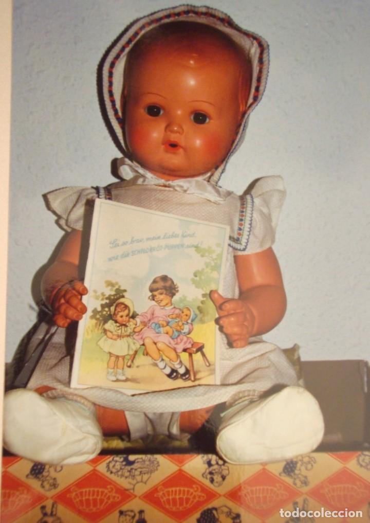 STRAMPELCHEN : MUÑECO BABY DE CELULOIDE ALEMÁN MARCA LA TORTUGA (Juguetes - Muñeca Extranjera Antigua - Celuloide)