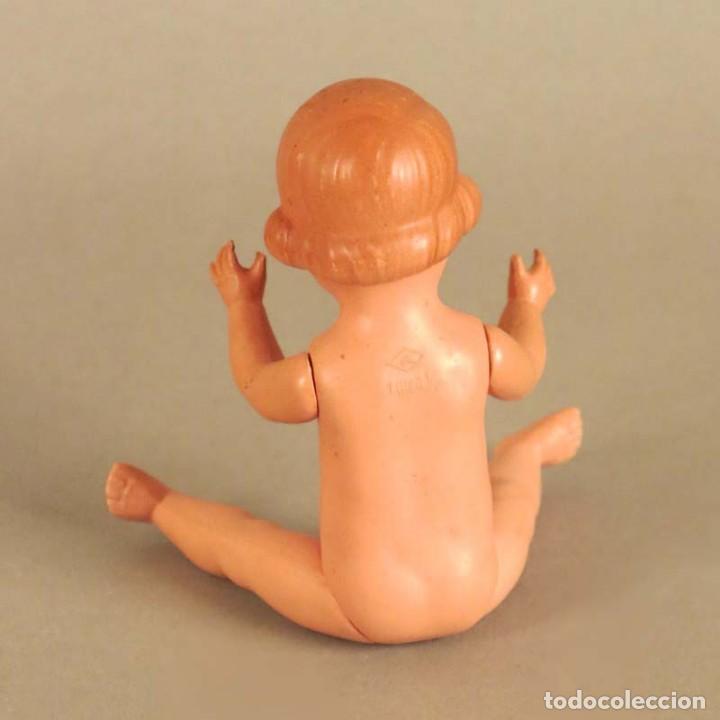 Muñecas Celuloide: Muñeca de celuloide de Schildkröt / Tortuga. 1940 - 1950. - Foto 4 - 167645880