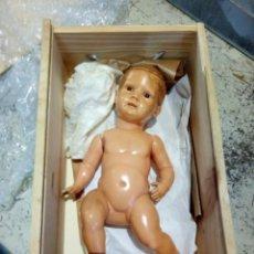 Muñecas Celuloide: ANTIGUO MUÑECO CELULOIDE TORTUGA. Lote 221547212