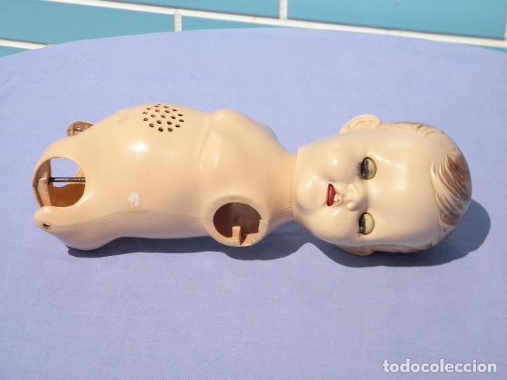 Muñecas Extranjeras: Cabeza y cuerpo de muñeco inglés Walker de Pedigree - Foto 4 - 117328039