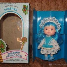 Muñecas Modernas: BARBARA,BLUEBERRY SCENTED DOLL,MERRY BLUEBERRY POP,SIMILAR A TARTA DE FRESA,CAJA ORIGINAL,AÑOS 80. Lote 44919231