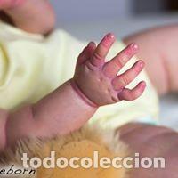 Muñecas Modernas: PRECIOSA REBORN DELKIT MAIZIE DE ANDREA ARCELLO, ED. LIMITADA Y AGOTADA - Foto 15 - 143642430