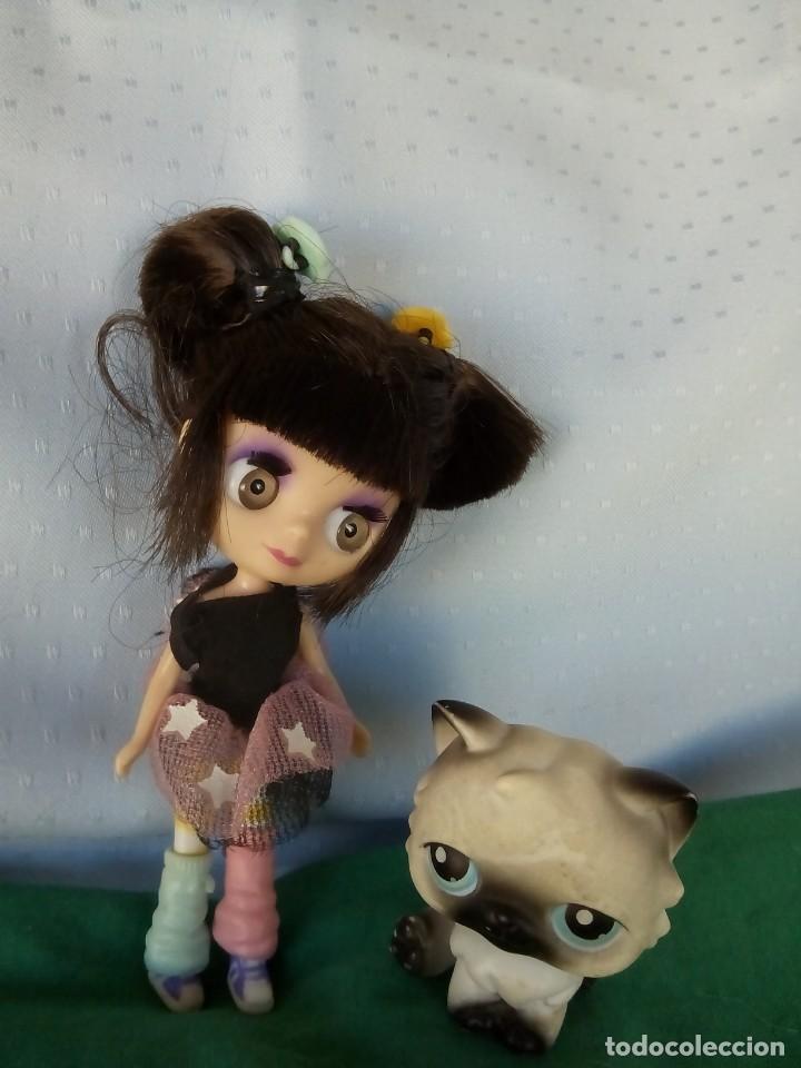 MUÑECA MINI BLYTHE LITTLEST PET SHOP TEA IN TOKYO + PET SHOP GATITO PERSA (Spielzeug - Moderne internationale Puppen - Andere Puppen)