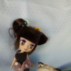 Muñecas Modernas: MUÑECA MINI BLYTHE LITTLEST PET SHOP TEA IN TOKYO + PET SHOP GATITO PERSA. Lote 156900390