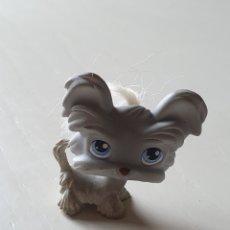 Muñecas Modernas: MASCOTA LPS LITTLEST PET SHOP. Lote 253893915
